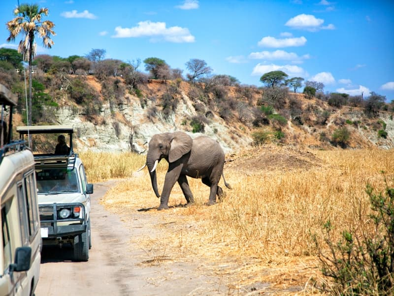 vm_-_safaris_et_lagons_de_locre_a_lazur_-_j4
